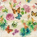 009 B клеёнка Dekorama 1,4*20м (бабочки на бежевом)