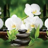 Фартук ПВХ Белые Орхидеи 600*3000*1,3мм (5)