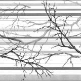 Панель стеновая ПВХ ветка серая 0,96х0,48м (30)