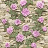 4681 Садовая роза (крем-сирен) обои влагост. на бум.основе 0,53*10 (Гомель Фокс) 24