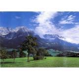 Альпийский луг Фотообои  9л 300х201см (Тула)