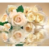 Белые розы Фотообои VIP  12л 294*260см (Тула)