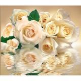 Ф Белые розы Фотообои на флиз. основе 300х270 см (Тула)